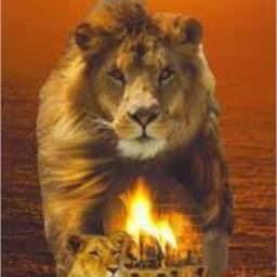 Lionheart*